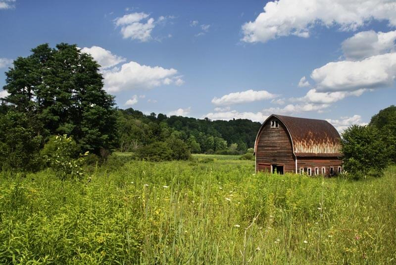 nature-field-countryside-house-large