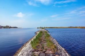 Wyspa Sobieszewska – raj nie tylko dla ptaków